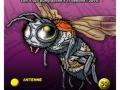 dea_card_insetti-16-copia
