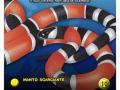dea_card_serpenti-16-copia