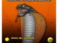dea_card_serpenti-19-copia