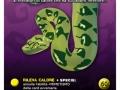 dea_card_serpenti-22-copia